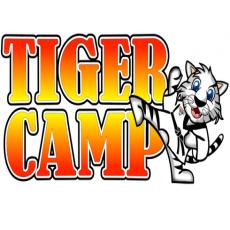 Nerf Ninja Camp, June 29-July 3