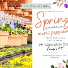 Things to do in Guilford - Old Saybrook, CT for Kids: Spring Greenhouse Mini Sessions, SLB Photography