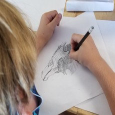 Drawing & Painting Camp + More!