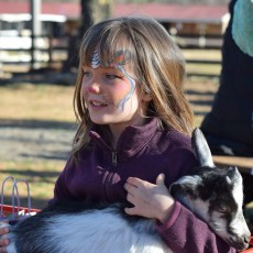 Durham-Chapel Hill, NC Events for Kids: Egg Hunt with Goats at Spring Haven Farm