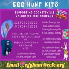 Towson, MD Events for Kids: Egg Hunt Kit Fundraiser