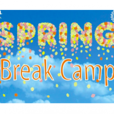 Spring Break Camp