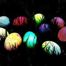 2021 M.A.K Egg Extravaganza