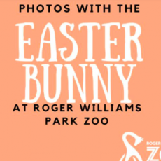 Visit with the Easter Bunny @ RWPZoo