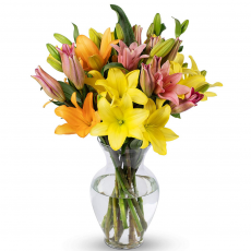 Fresh Cut Lily Bouquet with Vase