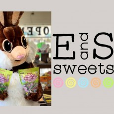 Come Meet Our Chocolate Bunny!