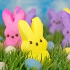 Create an Easter PEEPS House