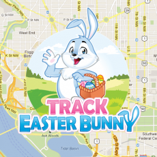 Track the Easter Bunny LIVE