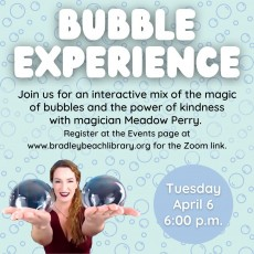 Bubble Experience and Magic Show