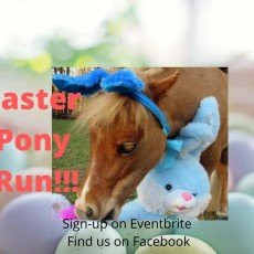 Easter Pony Run