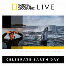 Things to do in Hulafrog at Home for Kids: Celebrate Earth Day with Secrets of the Whales, National Geographic