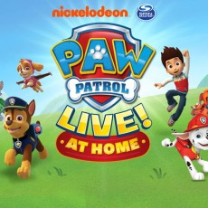 Things to do in Shrewsbury-Marlborough, MA for Kids: [National] PAW Patrol Live! At Home!, PAW Patrol Live!