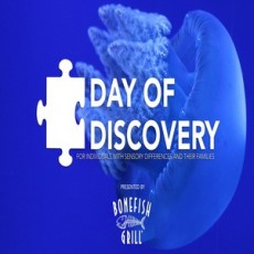 Things to do in Wesley Chapel-Lutz, FL: A Day of Discovery