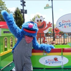Things to do in Westfield-Clark, NJ for Kids: Elmo's Springtacular, Sesame Place