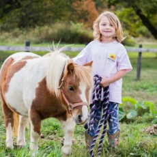 Things to do in Towson, MD for Kids: Farm