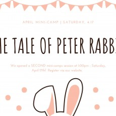 Things to do in Waukesha-Lake Country, WI for Kids: April Mini-Camp: Tale of Peter Rabbit, Petite Pas Ballet School