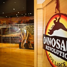 Things to do in Palm Beach Gardens, FL for Kids: Dinosaur Revolution at the Science Center, South Florida Science Center and Aquarium