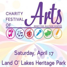 Wesley Chapel-Lutz, FL Events: 2021 Charity Festival of Arts