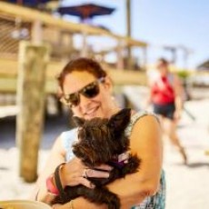 Things to do in Cape May County, NJ: Dog Days of Summer Dog Adoption Event