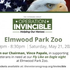 Fly Like An Eagle At Elmwood Park Zoo