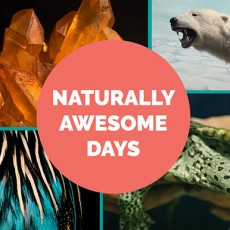 Main Line, Pa Events: Naturally Awesome Days: Earth Day Celebration