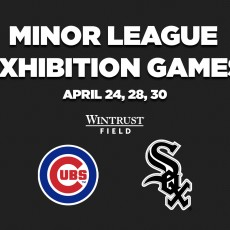 Arlington Heights-Palatine IL Events for Kids: Sox/Cubs Minor League Exhibition Game