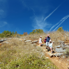 MWC Activity: Family Hike