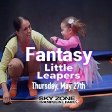 Things to do in Melrose-Somerville, MA for Kids: Fantasy Little Leapers, Sky Zone Everett