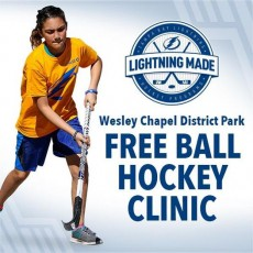Things to do in Wesley Chapel-Lutz, FL: Ball Hockey Clinic
