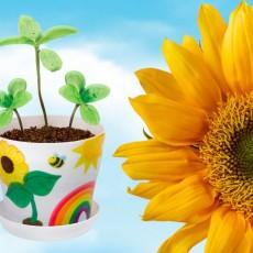 Lafayette Parish, LA Events: [National] Plant a Sunflower Garden