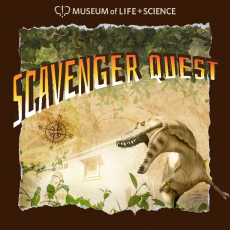Things to do in Durham-Chapel Hill, NC: Scavenger Quest at the Museum of Life & Science