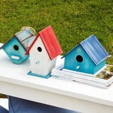 Paint A Bird House