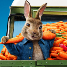 Catch the Release of Peter Rabbit 2