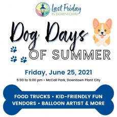 Things to do in Wesley Chapel-Lutz, FL: Last Friday in Downtown