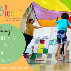 Things to do in Waukesha-Lake Country, WI for Kids: Open House , Bloom Fine Arts for Preschoolers