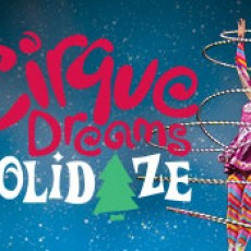 Things to do in The Brunswicks, NJ for Kids: Cirque Dreams Holidaze, State Theatre New Jersey