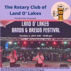 Land O' Lakes Bands & Brews Fest