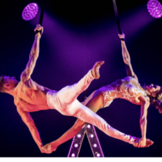 Things to do in Thousand Oaks, CA for Kids: A Magical Cirque Christmas , Thousand Oaks Civic Arts Plaza