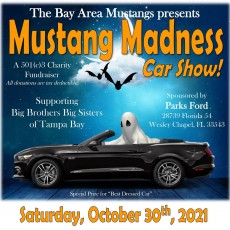 BAM! Mustang Madness Car Show