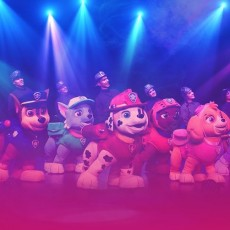 Things to do in Aberdeen-Bel Air, MD for Kids: PAW Patrol Live! The Great Pirate Adventure, Hippodrome Theater