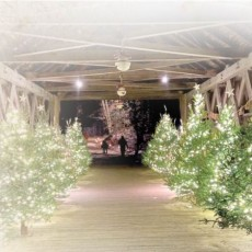 Worcester, MA Events: Christmas by Candlelight