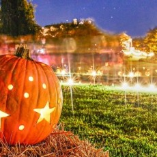 Things to do in Aberdeen-Bel Air, MD for Kids: Garden Glow - A Ladew Tradition of Illuminating Fun, Ladew Gardens