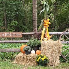 Things to do in Red Bank, NJ for Kids: 1830s All Hallow's Eve Celebration, The Historic Village at Allaire