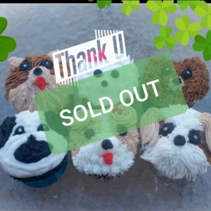 Worcester Ma Hulafrog Sold Out Puppy Cupcake Decorating