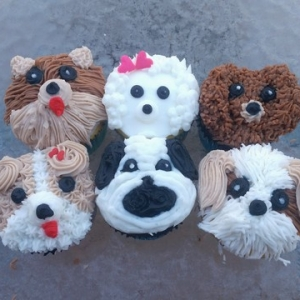 Worcester, MA Events: Puppy Cupcake Decorating Class