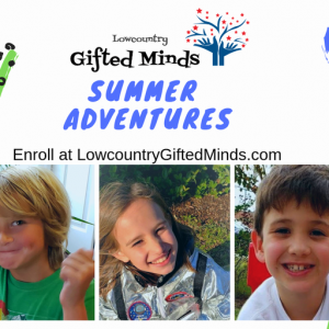 Lowcountry Gifted Minds
