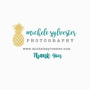 Michele Sylvester Photography