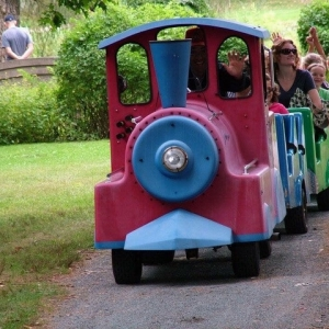 Brookline-Norwood, MA Events for Kids: Apple Harvest Fair