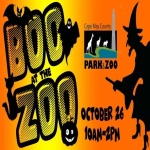 Cape May County, NJ Events: Boo at the Zoo