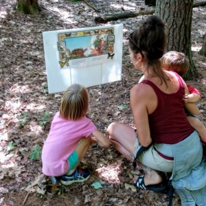 Concord, NH Events: Tale Trail- Leaf Man
